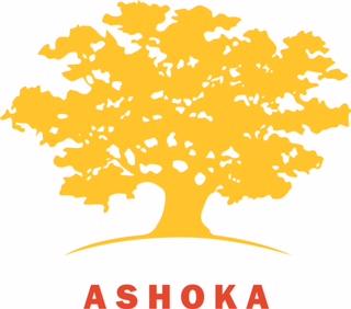 Ashoka_Yellow_LOWRES